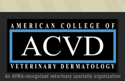 American College of Veterinary Dermatology